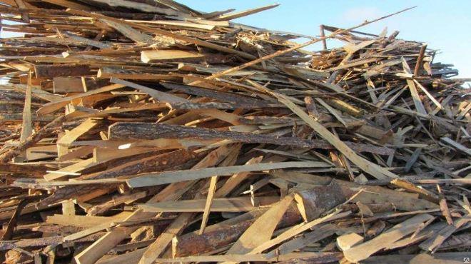древесный отход обрезки