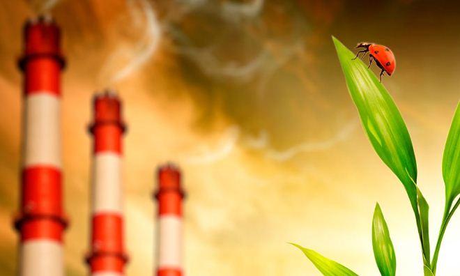 отчет об использовании отходов, ответственность за неправильную деятельность